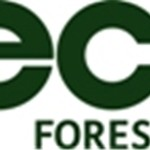 ECO2 Forests Launches New Corporate Video and Website