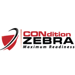 Social Media Portal interview with Wilson Wong from Condition Zebra
